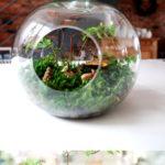 mein Garten im Glas