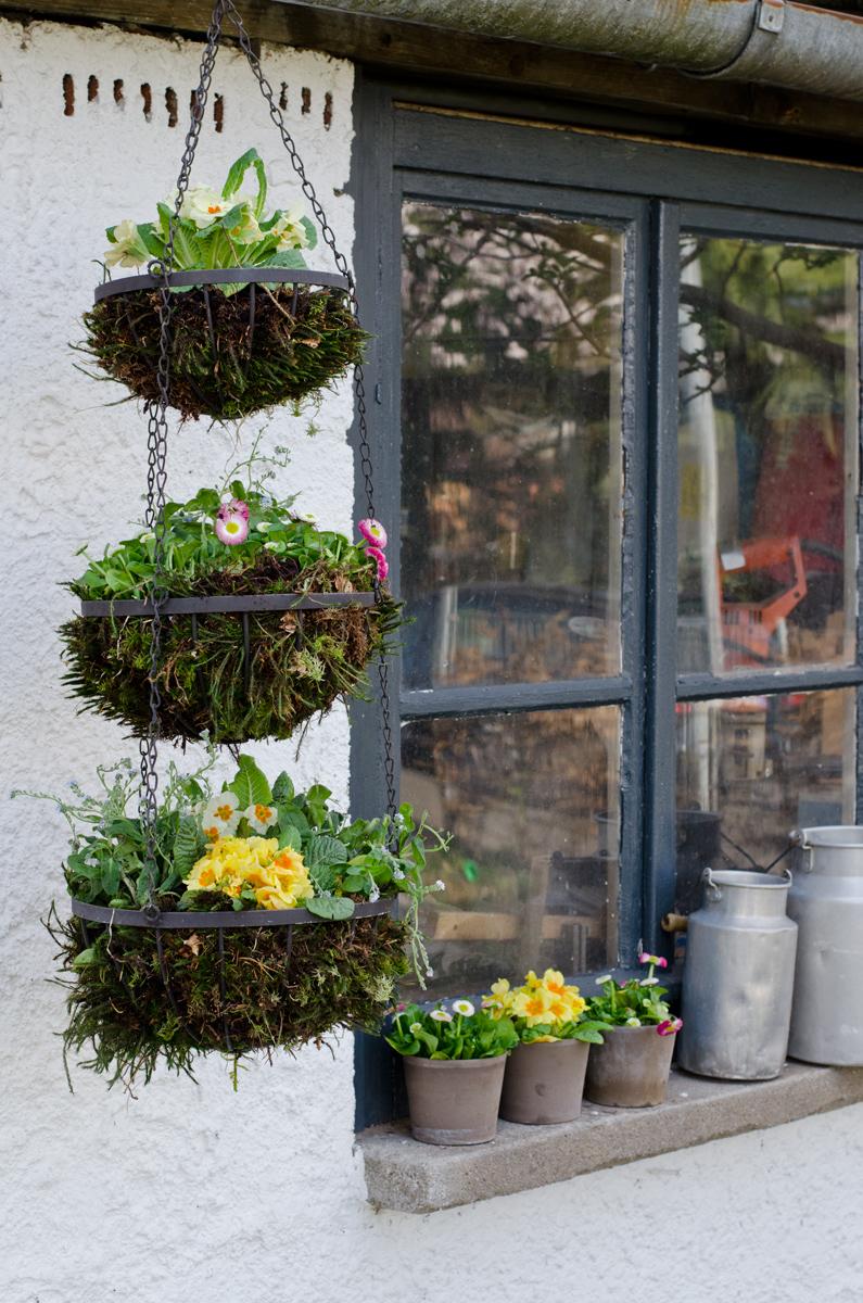 hanging basket auf drei etagen leelah loves. Black Bedroom Furniture Sets. Home Design Ideas