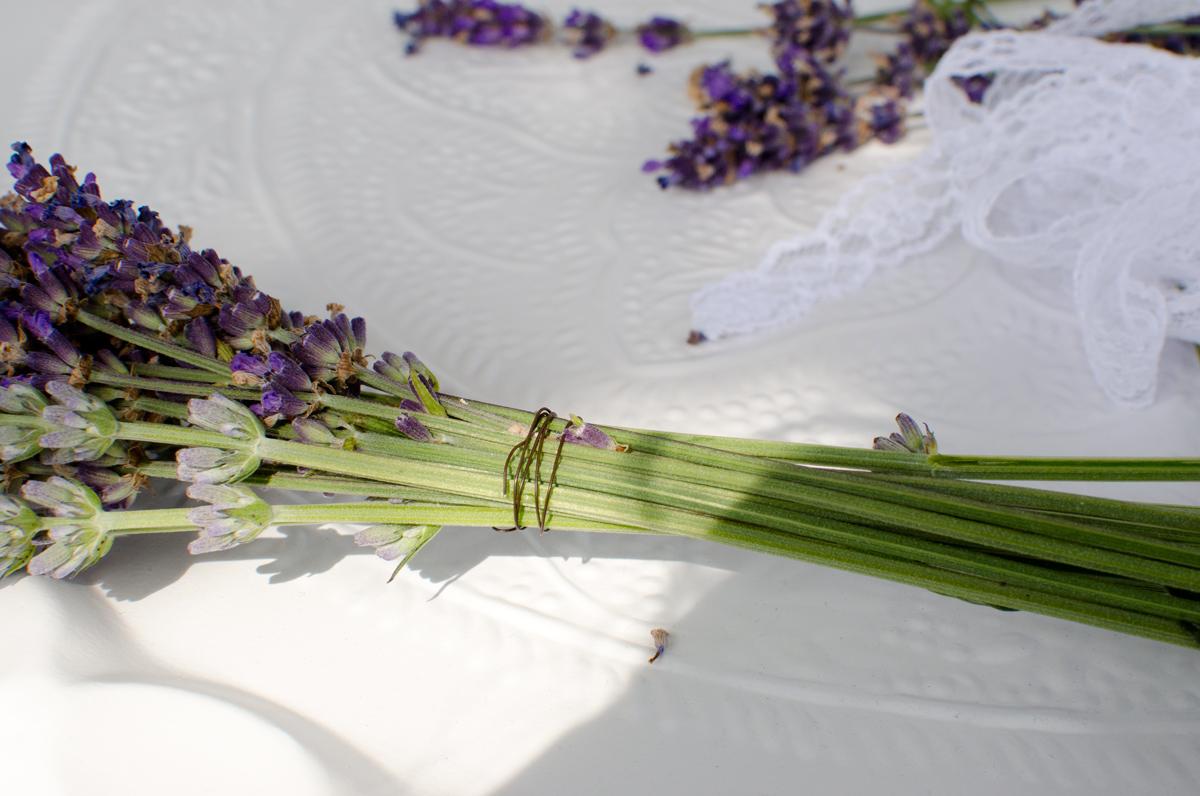 Kleines Französisches Lavendel Bouquet Als Vintage Deko Accessoire, Das  Auch Noch Die Motten Vertreibt