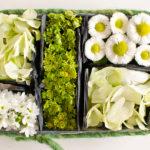 Blumiges Sushi und Giveaway