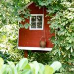 Ein Sommer im Baumhaus