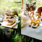 Sonntags im Wald (kleine Pilzkunde)