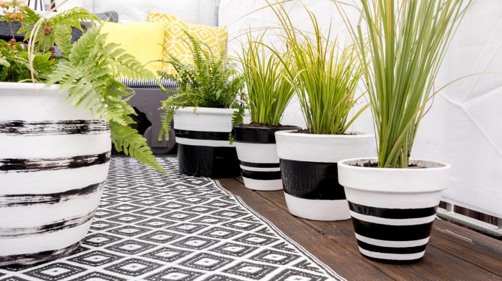 pflanzen archives leelah lovesleelah loves. Black Bedroom Furniture Sets. Home Design Ideas