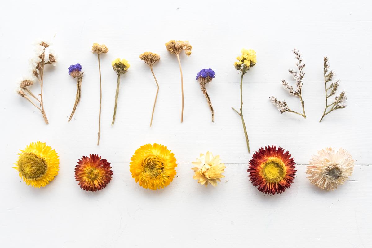 Strohblumen Trocknen diy anhänger mit trockenblumen leelah