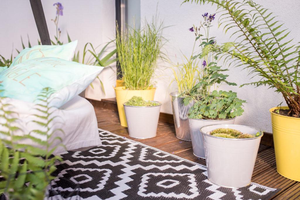 Garten in Zinkeimern auf dem Holzdeck mit Farn und Gräsern