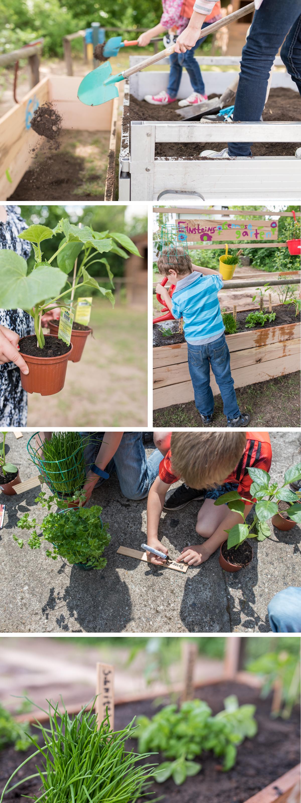 DIY Gemüse Hochbeet für die Grundschule im Rahmen der Aktion #DANKEsagtdanke