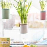 Frühling am Fenster mit upcycling Blumenampeln