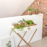 DIY – mein kleiner indoor Garten