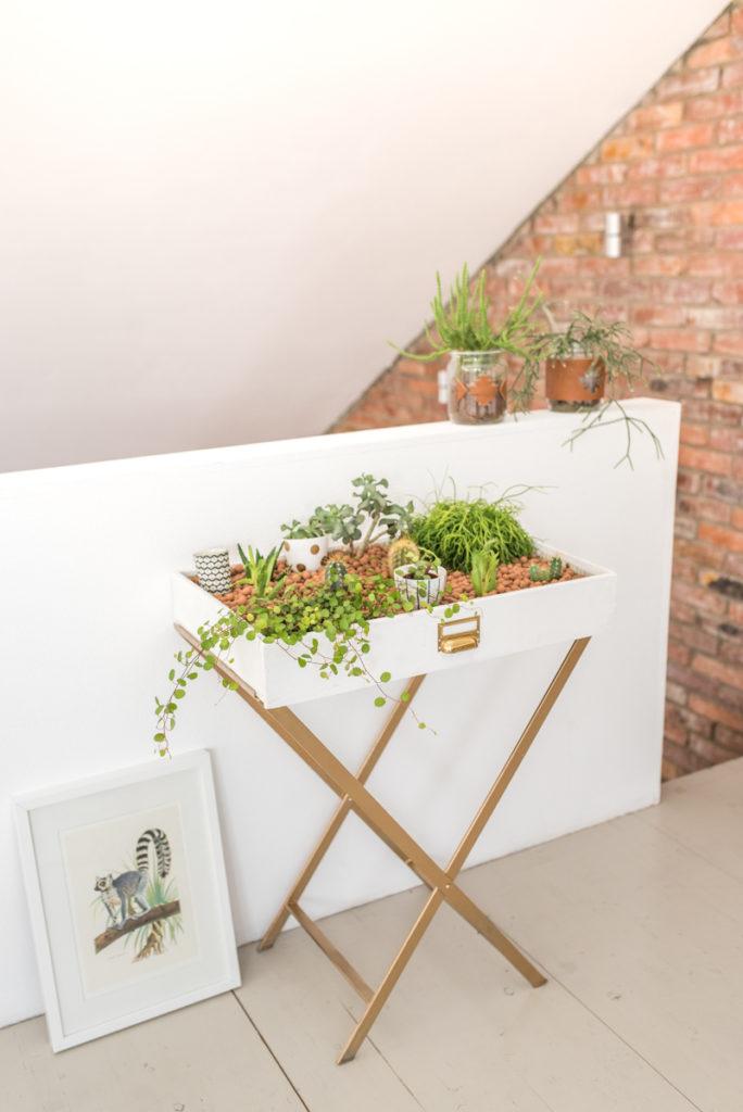 DIY Anleitung für einen upcycling indoor Garten aus einer alten Schublade mit Kakteen und Sukkulenten als Deko im vintage Look für das Wohnzimmer