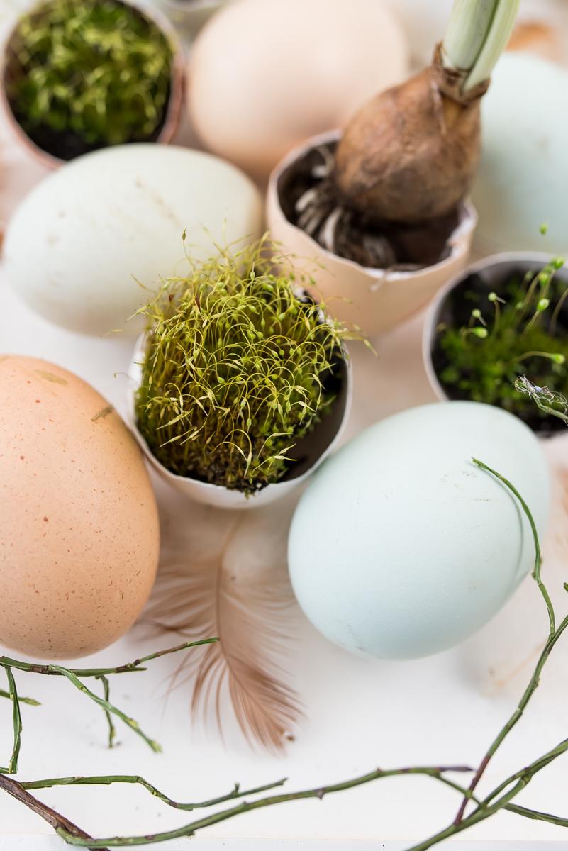 Natürliche Osterdeko mit Eiern in Pastellfarben