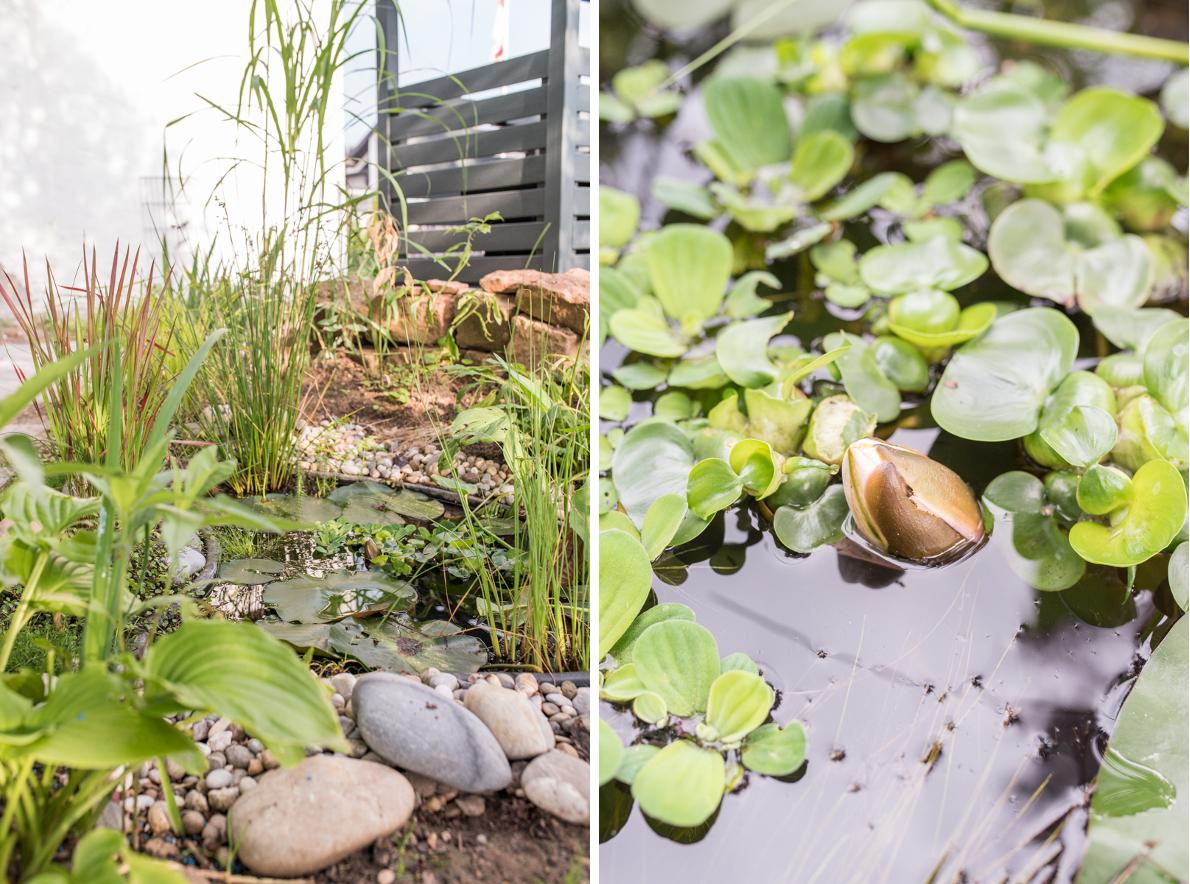 Dekoideen für den Garten im Sommer mit kleinem Teich und Wasserpflanzen
