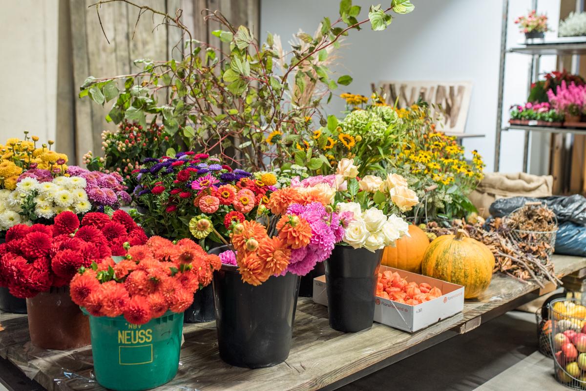 DIY Deko für Halloween mit Herbst Blumen und Kürbis in bunten Farben