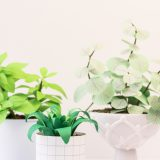 DIY – Pflanzen aus Papier