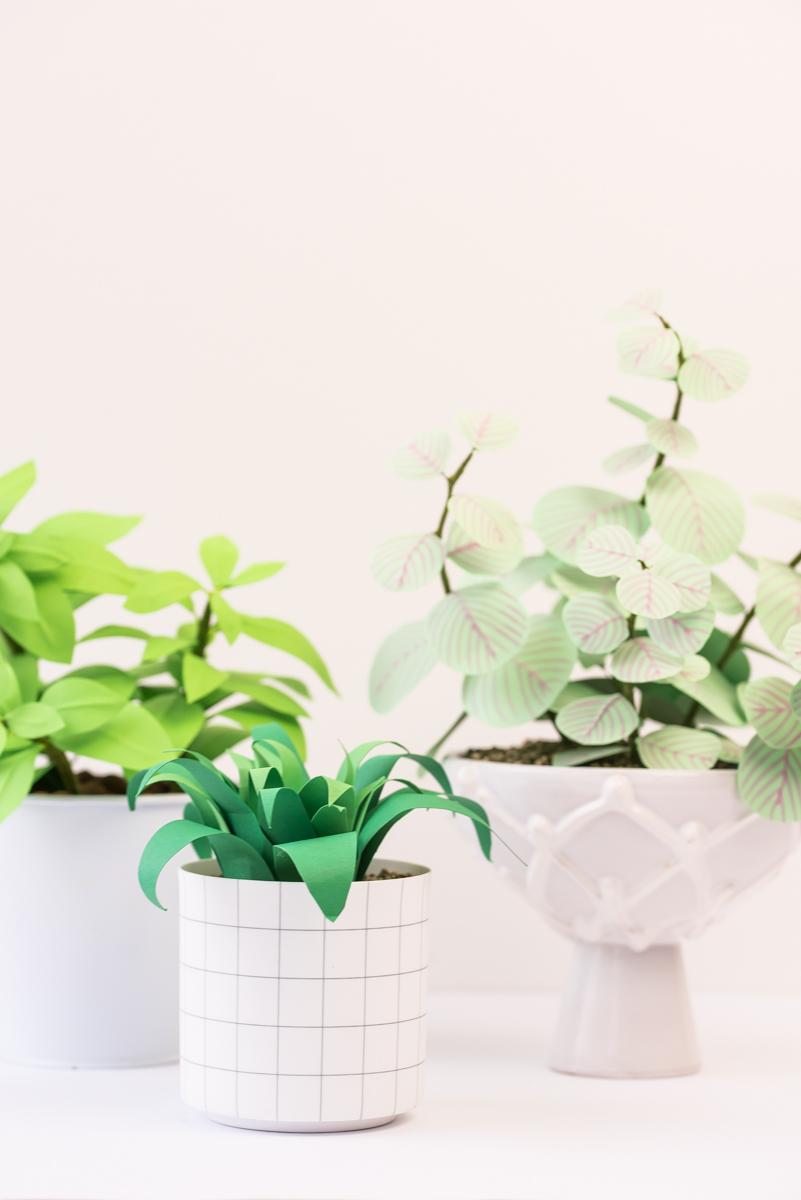 Anleitung für selbst gemachte DIY Zimmer Pflanzen aus Papier als Deko für den immergrünen Indoor Garten zu Hause