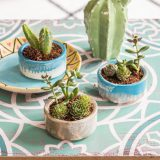 DIY – mini Terrarien im vintage Keramik Look