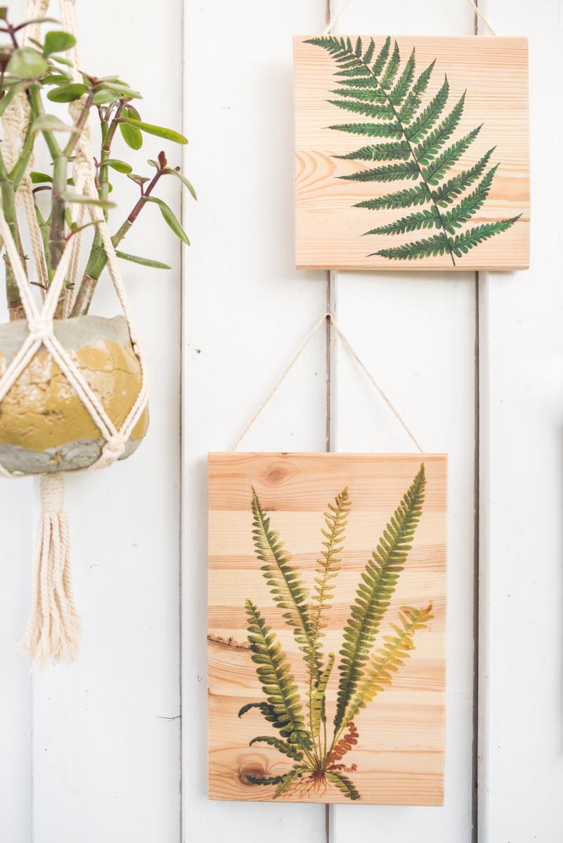 2018 04 30 Diy Botanik Bilder Holz Farn 17 Leelah Loves