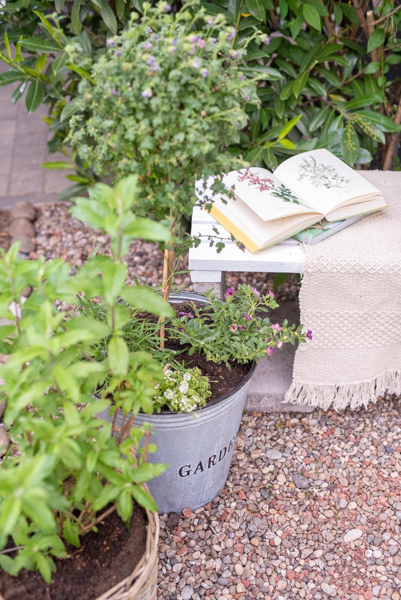 Sitzplatz Umgestaltung im Garten mit wenig Aufwand, ein paar Pflanzen und Farbe für die DIY Gartenbank