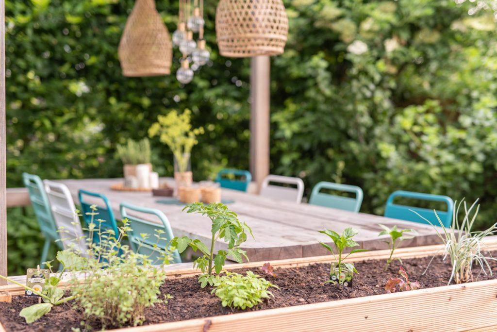 Ein Mottobeet zum Thema Grillgemüse anlegen mit Pflanzen von Naturtalent by toom und Tipps zum Aufbau eines Hochbeets im Garten und Füllung mit Ästen, Laub und Kompost